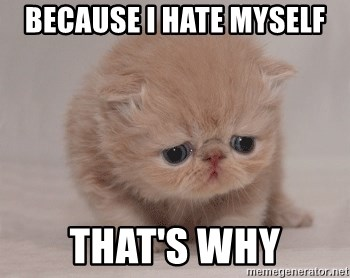 Super Sad Cat - because I hate myself that's why