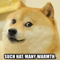 dogeee -  Such hat. Many warmth.