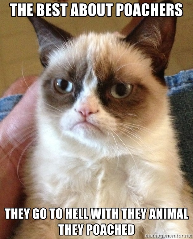 Grumpy Cat Face - The best about poachers They go to hell with they animal they poached