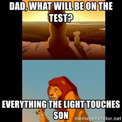 Lion King Shadowy Place - Dad, what will be on the test? everything the light touches son