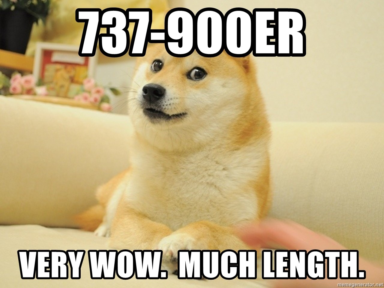 so doge - 737-900ER very wow.  much length.