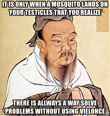 Confucius Say - It is only when a mosquito lands on your testicles that you realize  There is allways a way solve problems without using vielonce