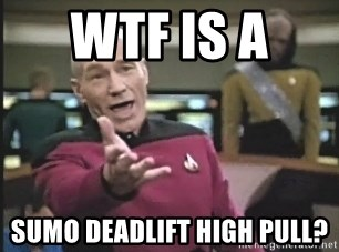 Wtf Is A Sumo Deadlift High Pull Captain Picard Meme Generator
