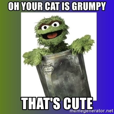 Oscar the Grouch - oh your cat is grumpy that's cute