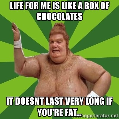 Fat Bastard - life for me is like a box of chocolates it doesnt last very long if you're fat...