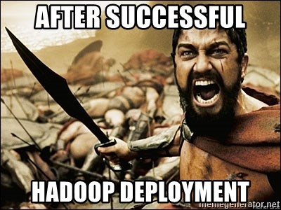 This Is Sparta Meme - after successful hadoop deployment