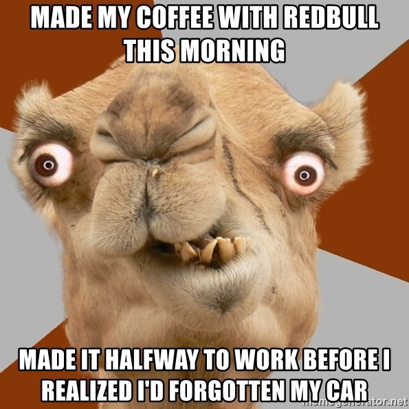 Crazy Camel lol - Made my coffee with redbull this morning Made it halfway to work before I realized I'd forgotten my car