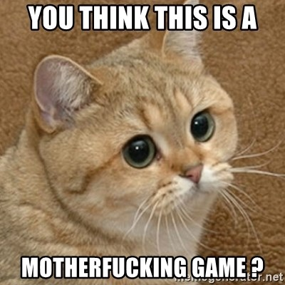 motherfucking game cat - YOU THINK THIS IS A mOTHERFUCKING GAME ?