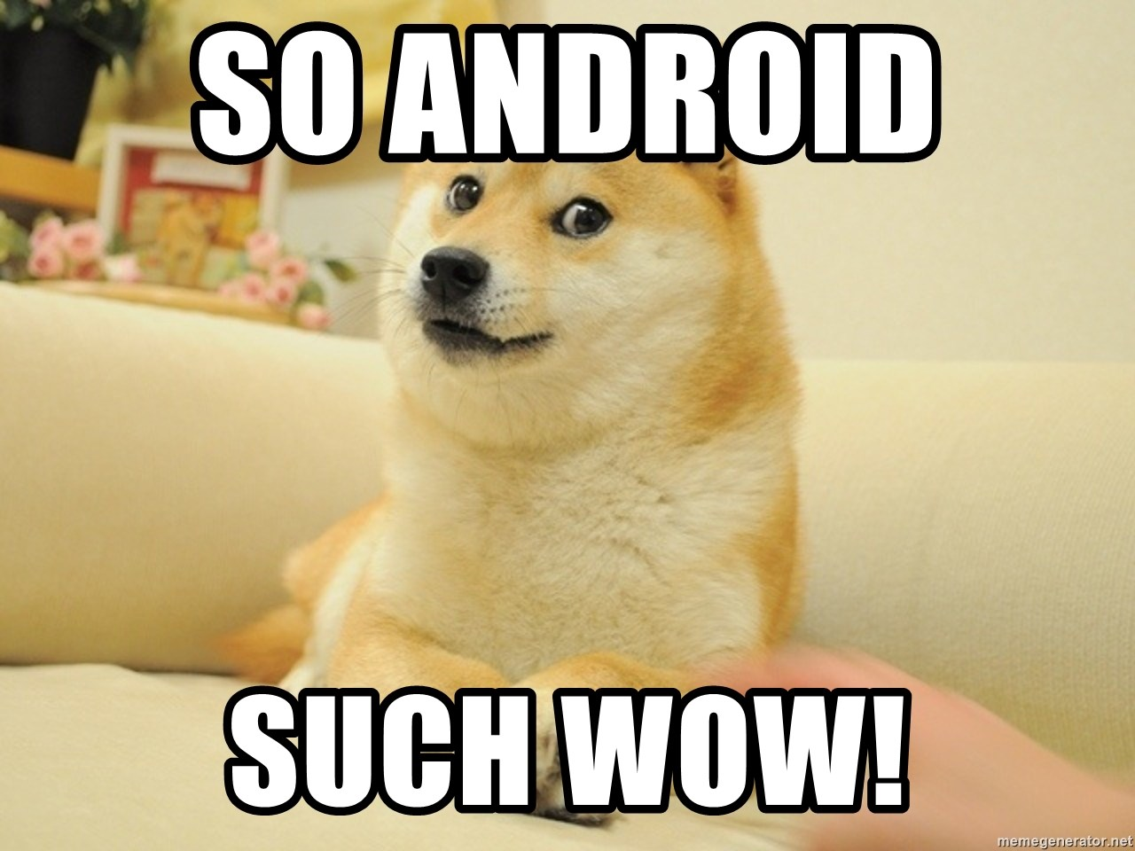 so doge - So Android   SUCH WOW!