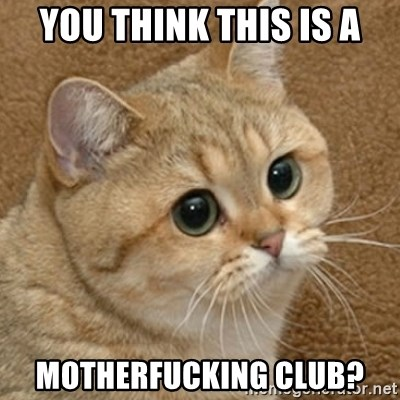 motherfucking game cat - You think this is a motherfucking club?