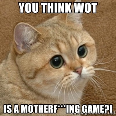 motherfucking game cat - You think Wot is a motherf***ing game?!