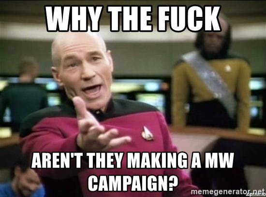Why the fuck - WHY THE FUCK AREN'T THEY MAKING A mw CAMPAIGN?