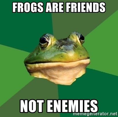 Foul Bachelor Frog - Frogs are friends  Not enemies