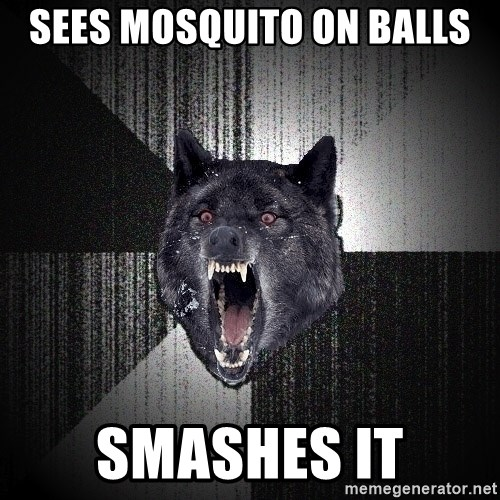 Insanity Wolf - SEES MOSQUITO ON BALLS SMASHES IT