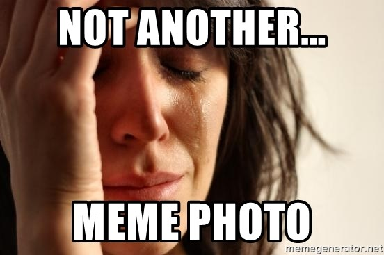 First World Problems - NOT ANOTHER... MEME PHOTO