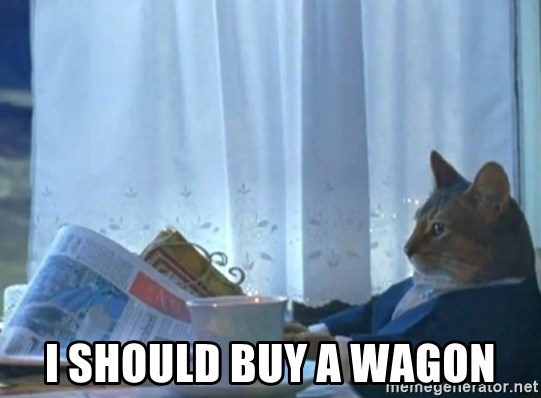 Sophisticated Cat -  I SHOULD BUY A WAGON