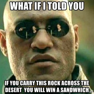 What If I Told You - WHAT IF I TOLD YOU IF YOU CARRY THIS ROCK ACROSS THE DESERT  YOU WILL WIN A SANDWHICH