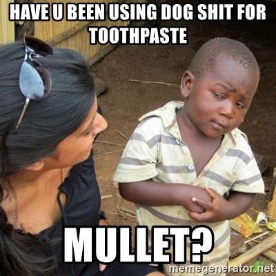 Skeptical 3rd World Kid - have u been using dog shit for toothpaste mullet?