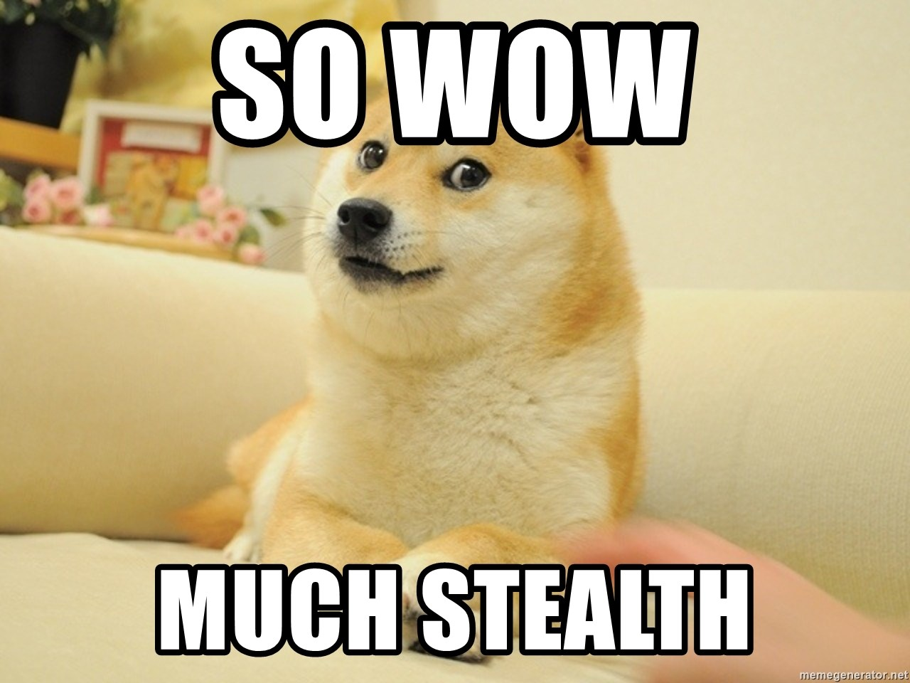 so doge - So wow Much stealth