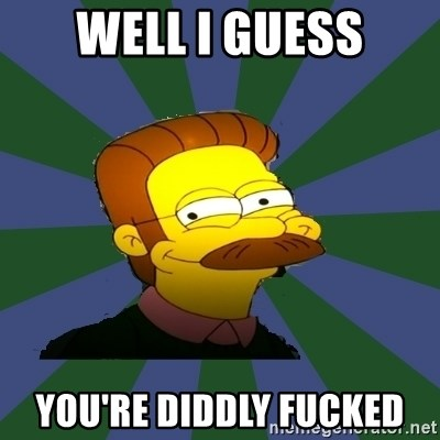 Image result for ned flanders meme youre diddly fucked