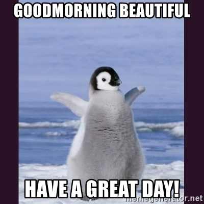 Goodmorning Beautiful Have A Great Day Cute Penguin Meme Generator