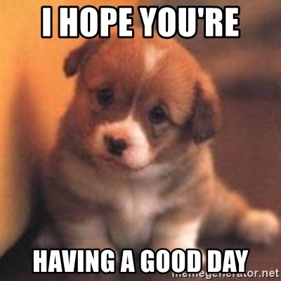 I Hope Youre Having A Good Day Cute Puppy Meme Generator