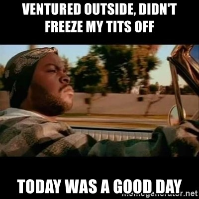 Ice Cube- Today was a Good day - ventured outside, didn't freeze my tits off today was a good day