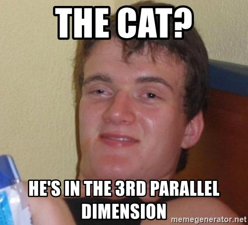 high/drunk guy - the cat? he's in the 3rd parallel dimension
