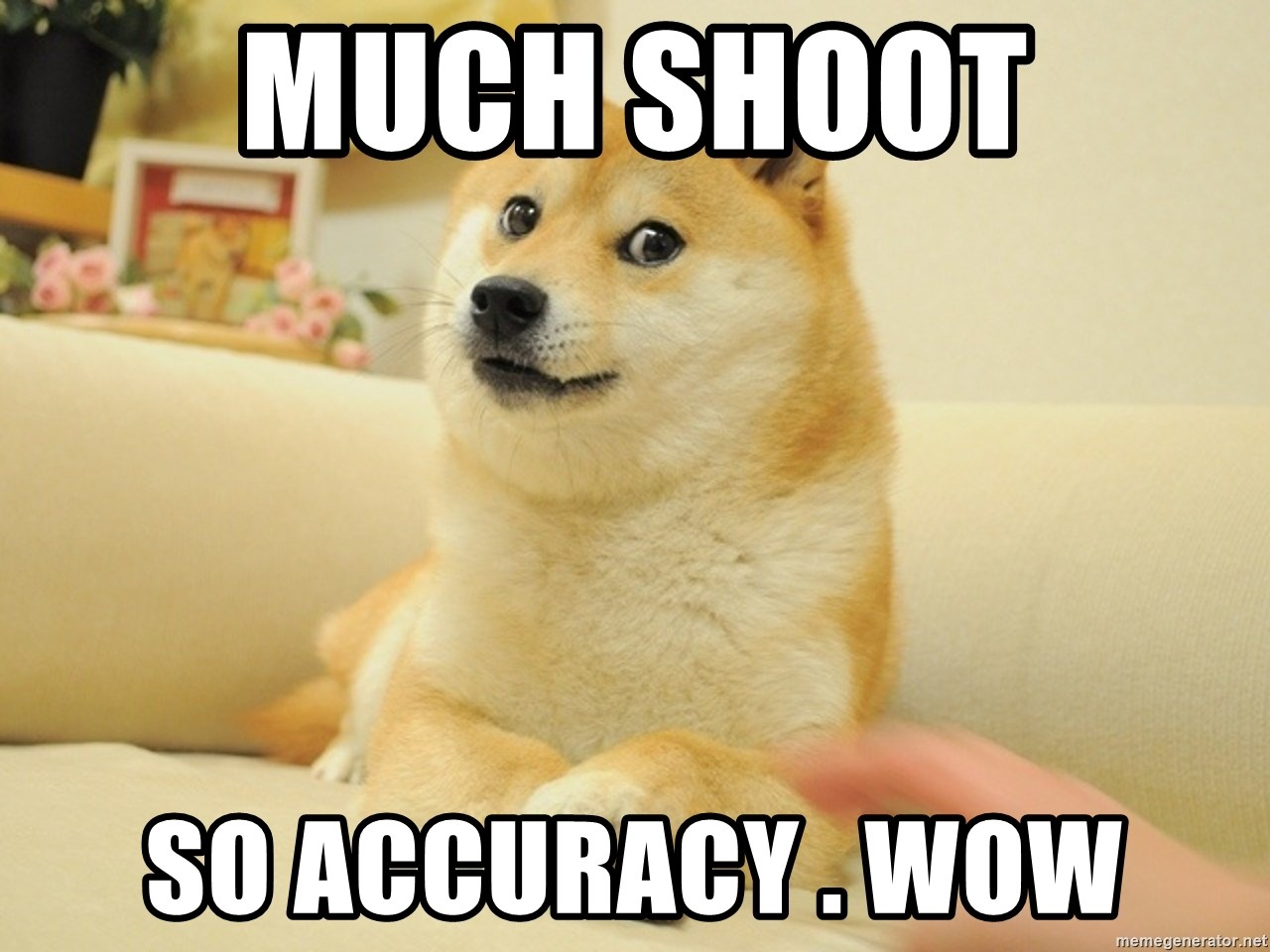 so doge - Much Shoot So Accuracy . WOW
