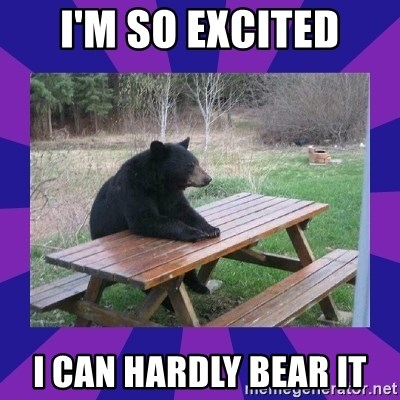 waiting bear - I'm so excited I can hardly bear it