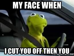 kermit the frog in car - My face when I cut you off then you
