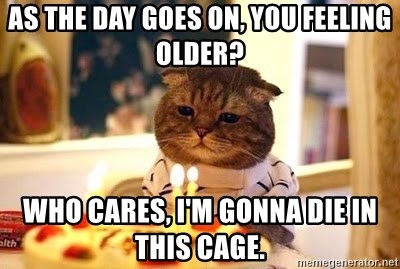 Birthday Cat - As the day goes on, you feeling older? Who cares, I'm gonna die in this cage.