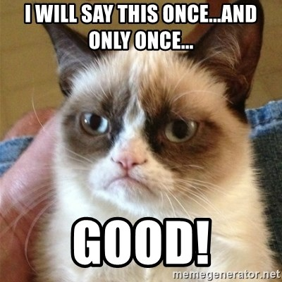 Grumpy Cat  - I will say this once...and ONLY once... good!