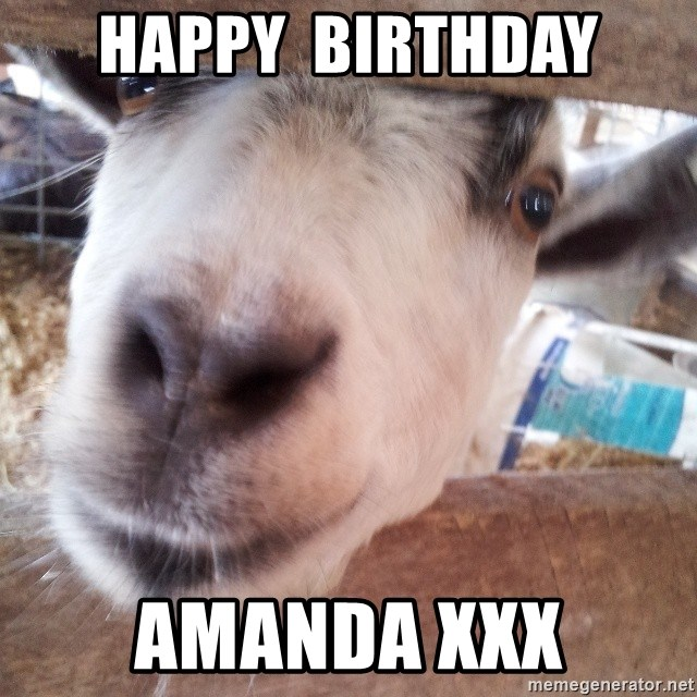 Animals with song quotes - Happy  Birthday Amanda xxx