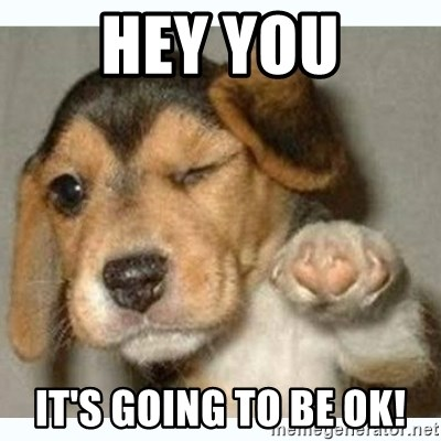 fist bump puppy - Hey you It's going to be ok!