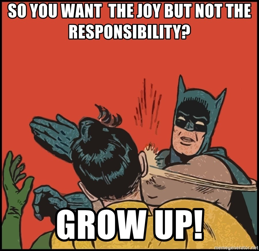 Batman slaps robin 2 - so you want  the joy but not the responsibility? grow up!