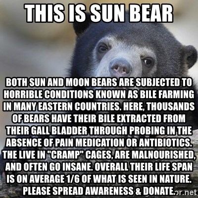 Facts on Bear Bile Farming
