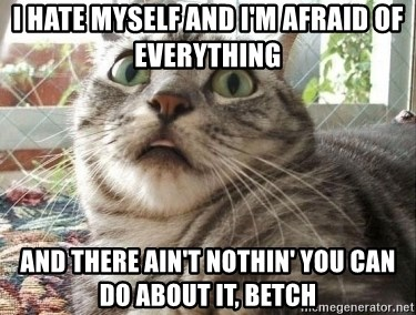 scared cat - I hate myself and I'm afraid of everything and there ain't nothin' you can do about it, betch