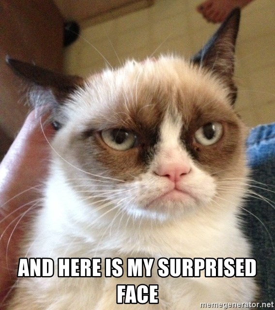 ANd here is my surprised face - Grumpy Cat 2 | Meme Generator