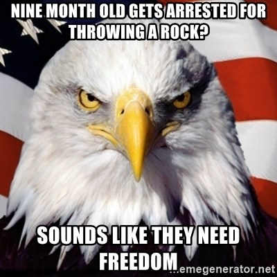 Freedom Eagle  - nine month old gets arrested for throwing a rock? sounds like they need freedom