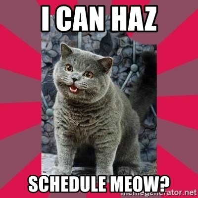 I can haz - I can haz Schedule meow?