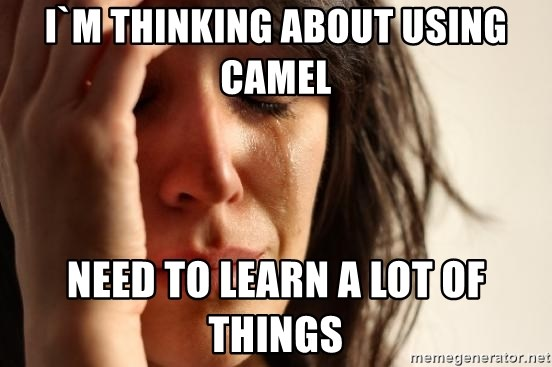 First World Problems - I`m thinking about using camel need to learn a lot of things