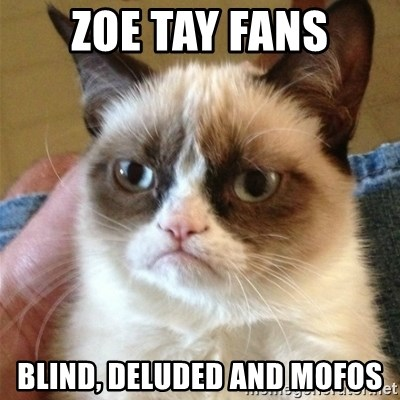 Grumpy Cat  - zoe tay fans blind, deluded and mofos