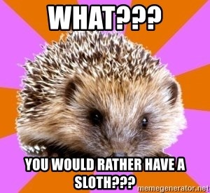 Homeschooled Hedgehog - What??? You would rather have a SLOTH???