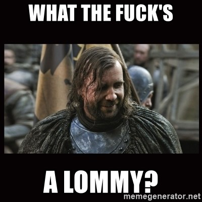 48245031 what the fuck's a lommy? the hound (game of thrones) meme