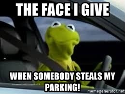 kermit the frog in car - The face I give  when somebody steals my parking!