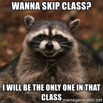 evil raccoon - wanna skip class? i will be the only one in that class
