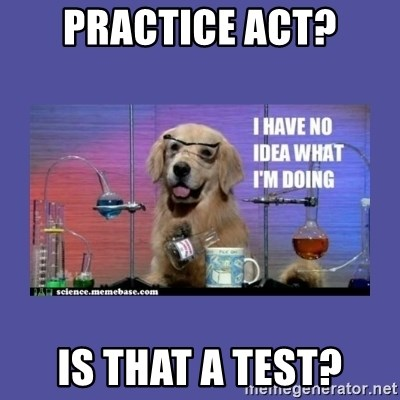 48385758 practice act? is that a test? i don't know what i'm doing! dog