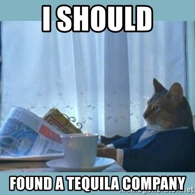 rich cat  - i should found a tequila company