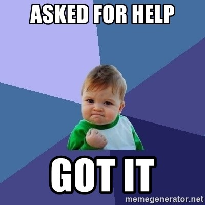Success Kid - ASKED FOR HELP GOT IT